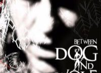 New Model Army - The New Model Army Story – Between Dog and Wolf