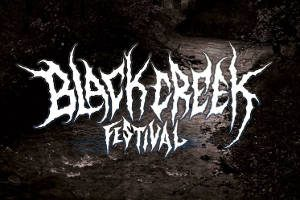 "4 Bands am Black Creek Festival 2019 @ <a href=""http://www.cityflyer.at/listing/schloss-rothschild/"">Schloss Rothschild</a>"