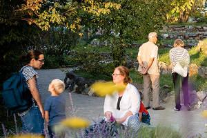 Dauerausstellung: Museumsgarten @ Museum NÖ